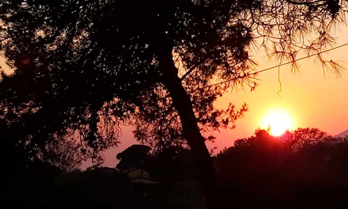 Toscana-photos-july-5-2020