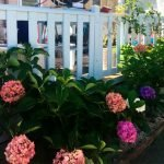 Jardín de la Regal Elegance