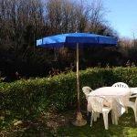 Jardín de la Shelbox Resale